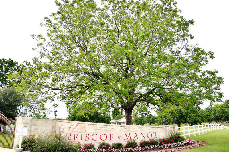 Briscoe Manor Entrance