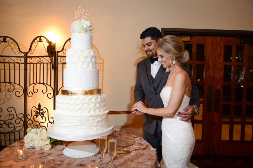 An elegant couple cuts an elegant cake
